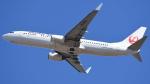 ゆっちゃんずさんが、成田国際空港で撮影した日本航空 737-846の航空フォト(写真)
