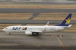 とらとらさんが、羽田空港で撮影したスカイマーク 737-86Nの航空フォト(写真)