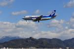 ぽんさんが、高知空港で撮影したANAウイングス 737-54Kの航空フォト(写真)