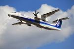 ぽんさんが、高知空港で撮影したANAウイングス DHC-8-402Q Dash 8の航空フォト(写真)