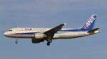 raichanさんが、成田国際空港で撮影した全日空 A320-211の航空フォト(写真)