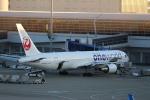 canon_leopardさんが、中部国際空港で撮影した日本航空 767-346/ERの航空フォト(写真)