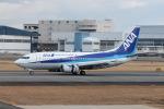 Shiro_ichiganさんが、伊丹空港で撮影したANAウイングス 737-54Kの航空フォト(写真)