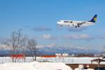 Orcaさんが、新千歳空港で撮影したスカイマーク 737-8FZの航空フォト(写真)