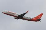 こだしさんが、関西国際空港で撮影したチェジュ航空 737-8BKの航空フォト(写真)