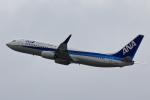 こだしさんが、関西国際空港で撮影した全日空 737-881の航空フォト(写真)