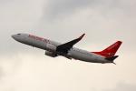 こだしさんが、関西国際空港で撮影したイースター航空 737-86Jの航空フォト(写真)