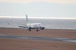canon_leopardさんが、中部国際空港で撮影したAIR DO 737-781の航空フォト(写真)