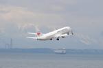 canon_leopardさんが、中部国際空港で撮影した日本航空 737-846の航空フォト(写真)