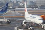 Koenig117さんが、伊丹空港で撮影した日本航空 737-846の航空フォト(写真)
