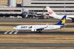 ぽん太さんが、羽田空港で撮影したスカイマーク 737-86Nの航空フォト(写真)