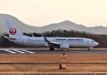 えるあ~るさんが、広島空港で撮影した日本航空 737-846の航空フォト(写真)