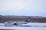 うとさんが、新千歳空港で撮影したスカイマーク 737-81Dの航空フォト(写真)