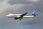 utarou on NRTさんが、成田国際空港で撮影した全日空 A320-211の航空フォト(写真)