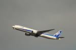 KENKEN25さんが、羽田空港で撮影した全日空 777-381の航空フォト(写真)
