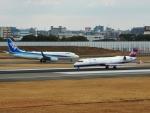 猛虎ファンさんが、伊丹空港で撮影した全日空 737-881の航空フォト(写真)