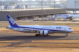 maverickさんが、羽田空港で撮影した全日空 787-881の航空フォト(写真)