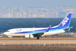 shining star ✈さんが、関西国際空港で撮影した全日空 737-781の航空フォト(写真)
