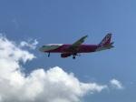 ken1992さんが、那覇空港で撮影したピーチ A320-214の航空フォト(写真)