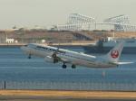 とりてつさんが、羽田空港で撮影した日本航空 737-846の航空フォト(写真)