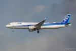 みなかもさんが、羽田空港で撮影した全日空 A321-211の航空フォト(写真)