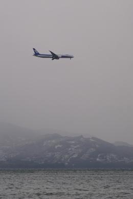 pringlesさんが、長崎空港で撮影した全日空 787-9の航空フォト(写真)