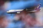 sukiさんが、羽田空港で撮影した全日空 A320-211の航空フォト(写真)