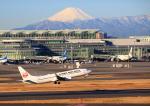 タミーさんが、羽田空港で撮影した日本航空 737-846の航空フォト(写真)