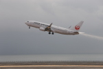 JOJOさんが、大分空港で撮影した日本航空 737-846の航空フォト(写真)