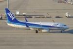 SIさんが、中部国際空港で撮影した全日空 737-781の航空フォト(写真)