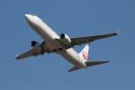 DONKEYさんが、宮崎空港で撮影した日本航空 737-846の航空フォト(写真)