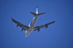そらまめさんが、成田国際空港で撮影した日本貨物航空 747-4KZF/SCDの航空フォト(写真)