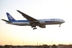 北の小人さんが、伊丹空港で撮影した全日空 777-281の航空フォト(写真)