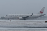COLT VerRさんが、岡山空港で撮影した日本航空 737-846の航空フォト(写真)