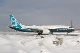 SINGCARGOさんが、新千歳空港で撮影したボーイング 737-8-MAXの航空フォト(写真)