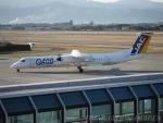 ◆oRT4jqzTBUさんが、松山空港で撮影した日本エアコミューター DHC-8-402Q Dash 8の航空フォト(写真)