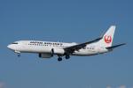 神宮寺ももさんが、高知空港で撮影した日本航空 737-846の航空フォト(写真)