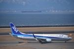 金魚さんが、中部国際空港で撮影した全日空 737-881の航空フォト(写真)