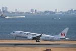 りゅうさんさんが、羽田空港で撮影した日本航空 737-846の航空フォト(写真)