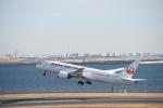 りゅうさんさんが、羽田空港で撮影した日本航空 787-846の航空フォト(写真)