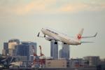 おっしーさんが、羽田空港で撮影した日本航空 737-846の航空フォト(写真)