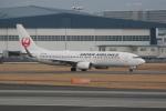 いっとくさんが、伊丹空港で撮影した日本航空 737-846の航空フォト(写真)