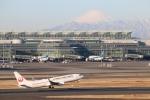 まえちゃさんが、羽田空港で撮影した日本航空 737-846の航空フォト(写真)
