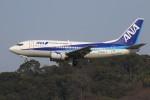 masa707さんが、福岡空港で撮影したANAウイングス 737-54Kの航空フォト(写真)