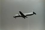 うすさんが、伊丹空港で撮影した全日空 YS-11-117の航空フォト(写真)