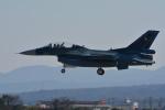 じぃじさんが、築城基地で撮影した航空自衛隊 F-2Bの航空フォト(写真)