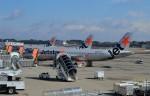 Juliaさんが、成田国際空港で撮影したジェットスター・ジャパン A320-232の航空フォト(写真)