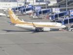 職業旅人さんが、中部国際空港で撮影した全日空 737-781の航空フォト(写真)
