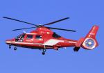 RA-86141さんが、名古屋飛行場で撮影した名古屋市消防航空隊 AS365N3 Dauphin 2の航空フォト(写真)