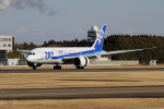 maverickさんが、成田国際空港で撮影した全日空 787-881の航空フォト(写真)